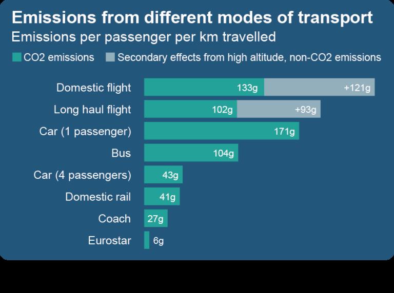 Transport graph