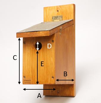 Bird box dimensions