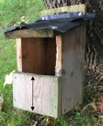 robin box snip